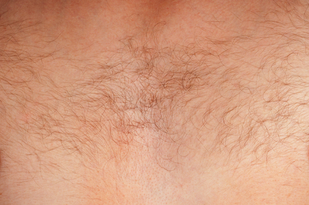 hairy chest: Close-up of a hairy chest of unrecognizable man