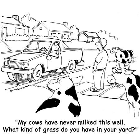 intolerant: cow cartoon Stock Photo