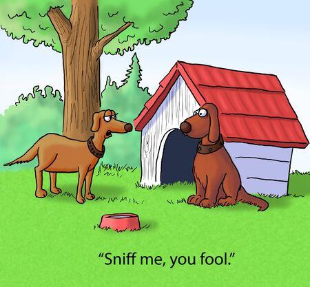 fleas: dog cartoon