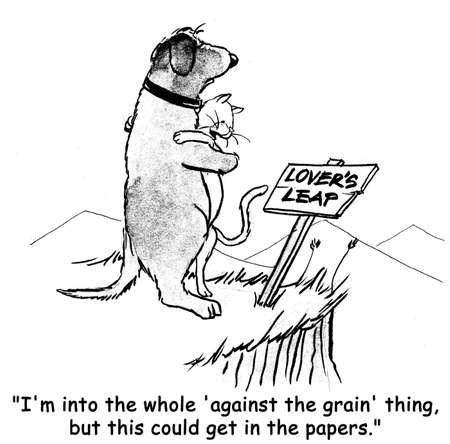 cat grooming: dog cartoon