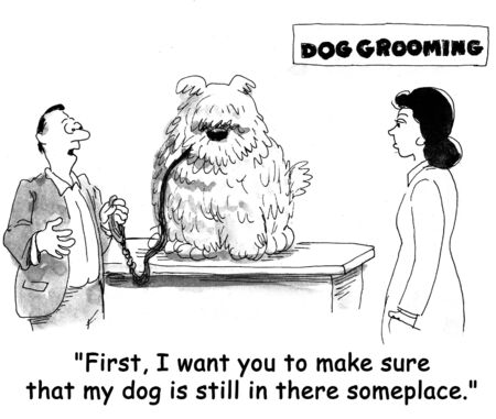 grooming: dog cartoon
