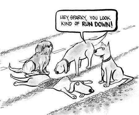 dog cartoon photo