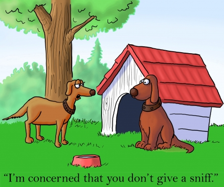 disapproval: Im concerned that you dont give a sniff. Stock Photo