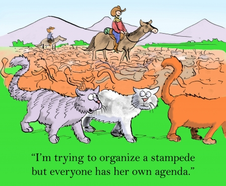 but: Im trying to organize a stampede but everyone has her own agenda.