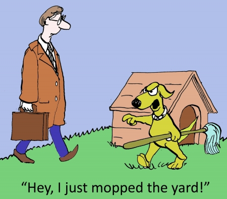 mopped: Hey, I just mopped the yard. Stock Photo