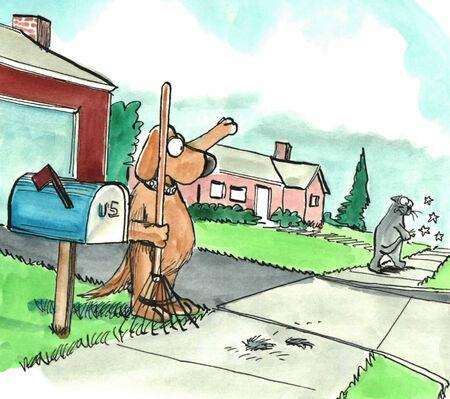 kampfhund: Kein Titel. Lizenzfreie Bilder