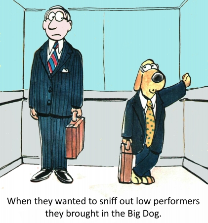 sniff: When they wanted to sniff out low performers they brought in the Big Dog