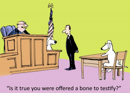 witness:  Is it true you were offered a bone to testify