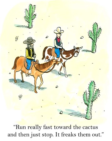 run out: Run really fast toward the cactus and then just stop  Freaks them out