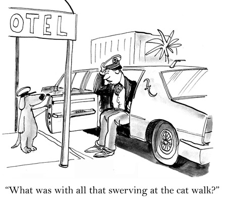 swerving: Cartoon of passenger asking dog driver, what was all that swerving in the cat walk.