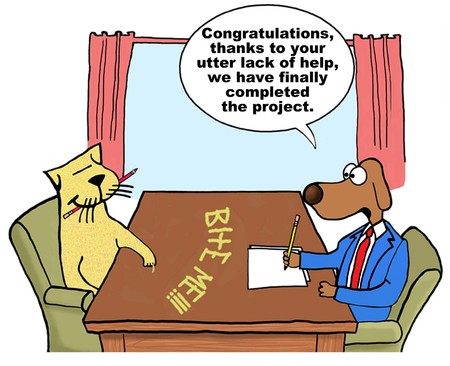 Cartoon of businessman dog, the cat has not helped at all to complete the project.