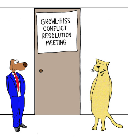 resolution: Conflict Resolution Meeting