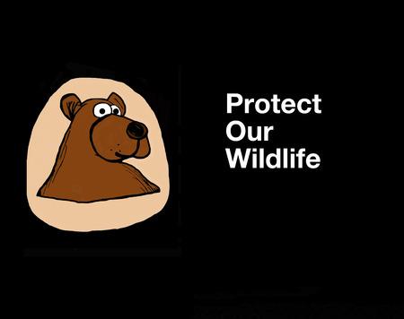 우리의 야생 동물을 보호 스톡 콘텐츠
