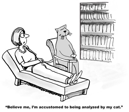 therapy: Analyzed by Cat Before