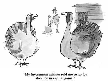 Turkeys Investment Strategy