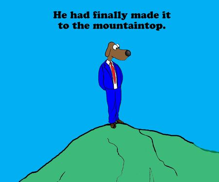 ladder: Mountaintop