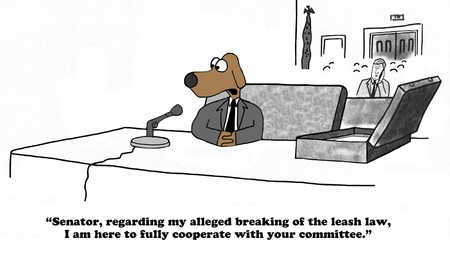 senator: Cartoon about testifying before a Senate committee.