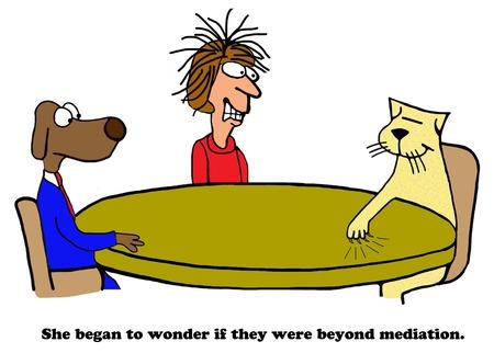 Beyond Mediation