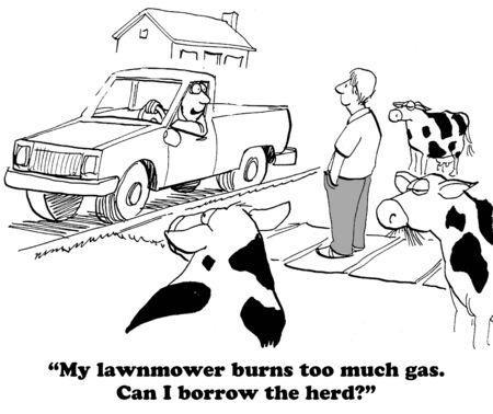 De mens wil Cows Neighbor's lenen om zijn gras te maaien Stockfoto