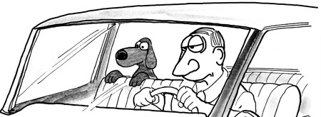B&W illustration of man driving car and his dog is peering over the front seat.
