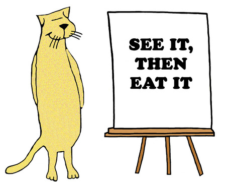 Yellow cat standing beside see it, then eat it.
