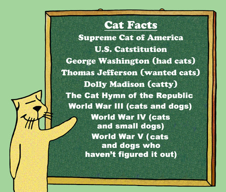 american history: Color illustration of a cats take on American history.