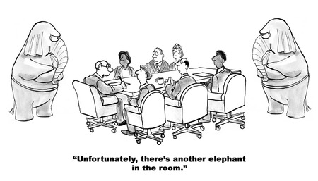 supervisor: Black and white cartoon about two elephants in the room.