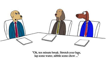Dogs want to break from meeting Banco de Imagens