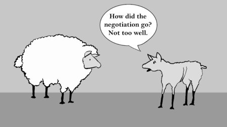 Sheep was shorn