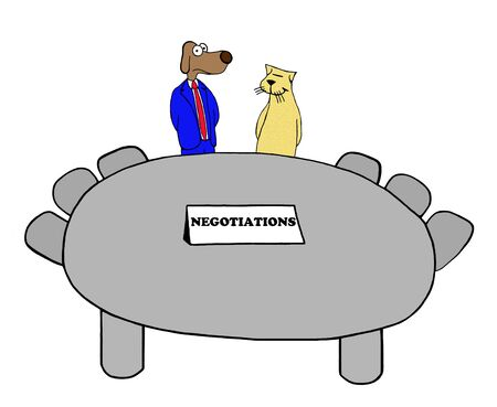 Dog and cat meet at negotiating table