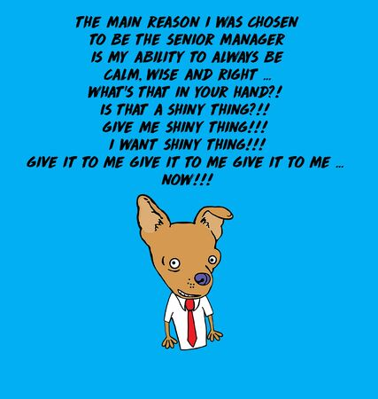 Color cartoon of a male chihuahua who is bragging that he is a senior manager because he is calm, yet he is immediately enthralled with the shiny thing.