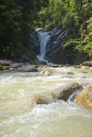 non cultivated: Tropical rainforest river Stock Photo