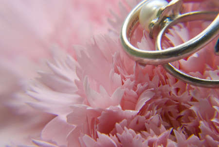 Two wedding or engagement ring on pink carnation flower background photo