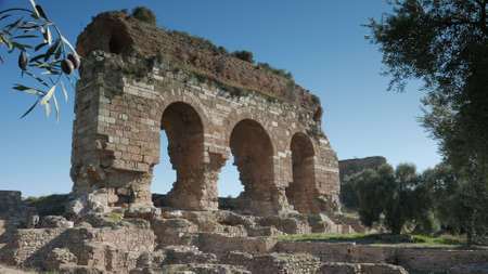Ancient ruins of Byzantine bath and gymnasium complex in Tralleis with olive trees. Aydin, Turkey.