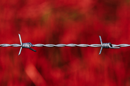 Taut shiny barbed wire over a blood red background