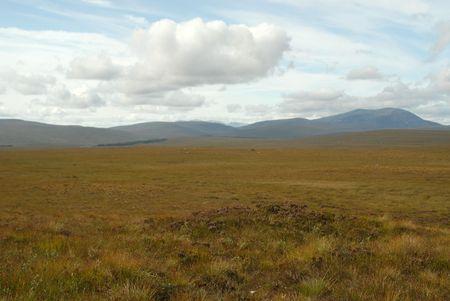 Scothish grasslands photo