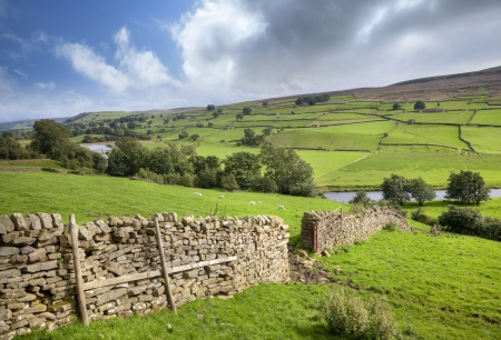 Yorkshire Dales: Yorkshire Dales, Swaledale, England Stock Photo