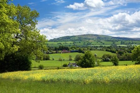 Landelijke Shropshire Stockfoto