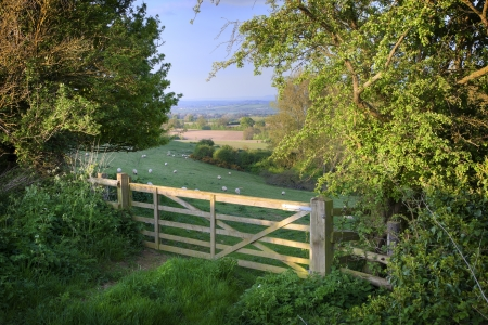 evening church: View over farm gate towards pretty English countryside, Cotswolds, England