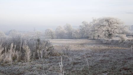 Rural countryside with hoar frost near Chipping Campden, Gloucestershire, England  photo