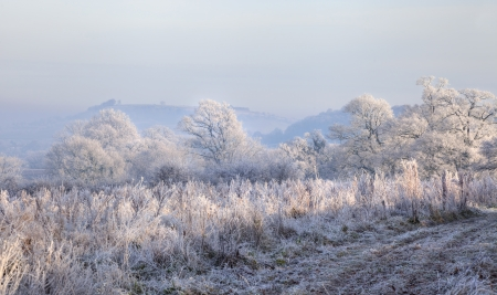 chipping: Rural countryside with hoar frost near Chipping Campden, Gloucestershire, England