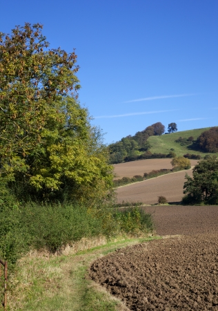 meon: Farmland at Meon Hill near the Cotswold village of Mickleton, Gloucestershire, England  Stock Photo