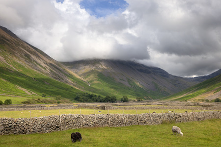 lake district england: Stone walls at Wasdale Head, Cumbria, the Lake District, England