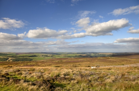 wensleydale: Moorland with heather near Reeth, Yorkshire Dales National Park, England  Stock Photo