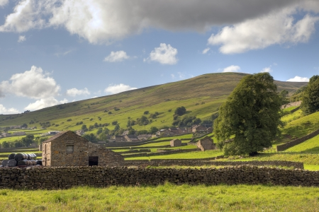 Yorkshire Dales: Field barns at Gunnerside, Swaledale, Yorkshire Dales National Park, England.