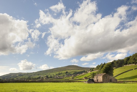 dales: Field barns at Gunnerside, Swaledale, Yorkshire Dales National Park, England.
