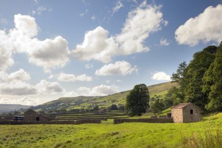 yorkshire dales: Graneros de campo en Gunnerside, Swaledale, Yorkshire Dales National Park, Inglaterra. Foto de archivo