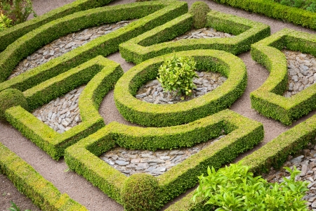 Traditional English box hedge knot garden with pebbles. Stockfoto