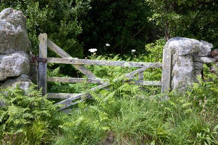 scilly: Lichen covered farm gate surrounded by bracken, St Agnes, Isles of Scilly, Cornwall, England. Stock Photo