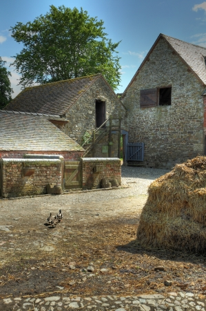 Traditional English farmyard with ducks and muck heap. photo